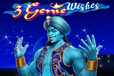 Descripción legal Crazy Genie – 13909
